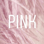 ARMOCROMIA: PINK, THE MOST FEMININE COLOR, WHAT DOES IT SAY?